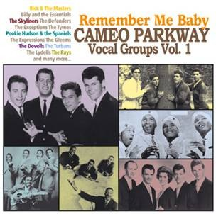 V.A. - Remember My Baby :Cameo Parkway Vocal Groups Vol 1