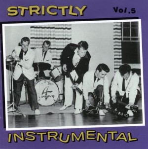V.A. - Strickly Instrumental : Vol 5