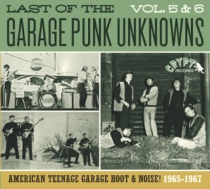 V.A. - Last Of The Garage Punk Unknows : Vol 5 & 6
