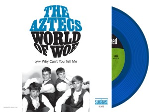 Aztegs ,The - World Of Woe / Why Can't You Tell Me ( limited )