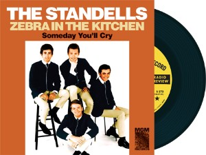 Standells ,The - Zebra In The Kitchen + 1 ( limited )