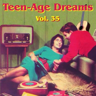 V.A. - Teenage Dreams Vol 35