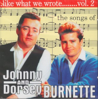 V.A. - Like What We Wrote Vol - 2 : The Songs Of Johnny..